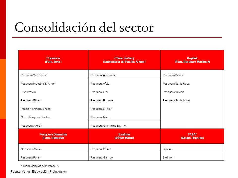 Consolidación del sector