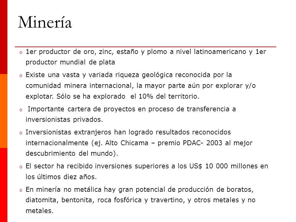 Minería 1er productor de oro, zinc, estaño y plomo a nivel latinoamericano y 1er productor mundial de plata.