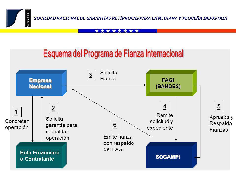 Esquema del Programa de Fianza Internacional