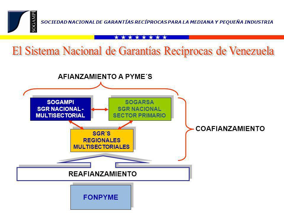 El Sistema Nacional de Garantías Recíprocas de Venezuela