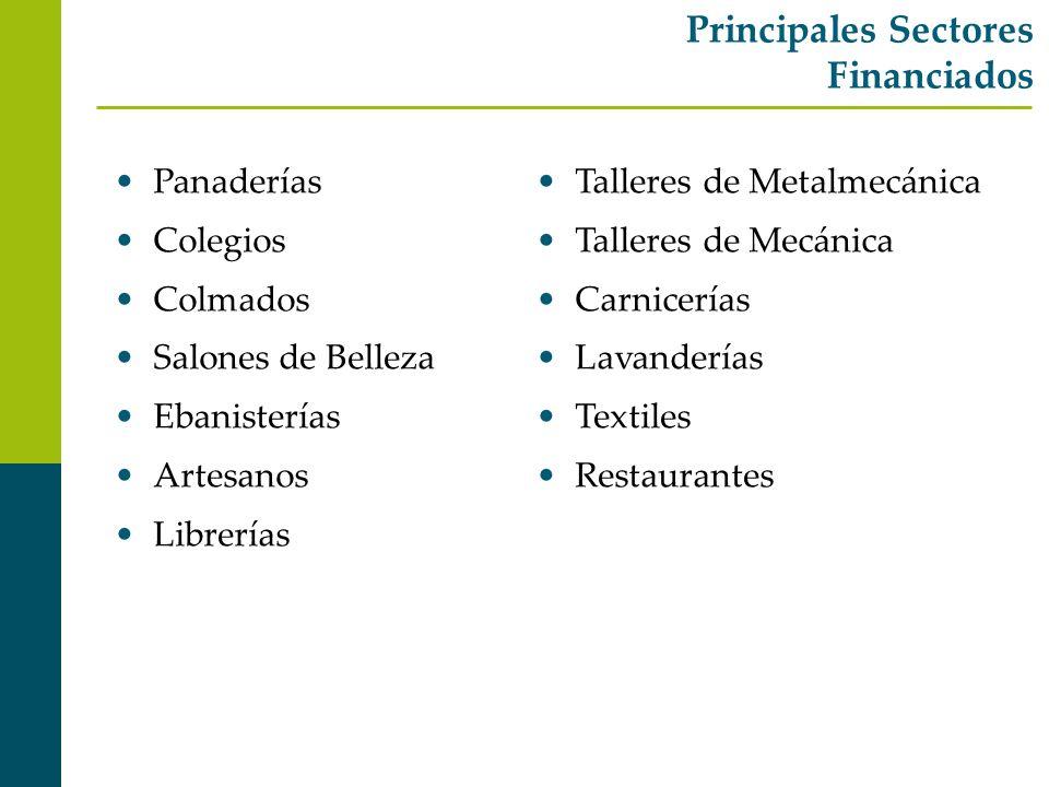 Principales Sectores Financiados