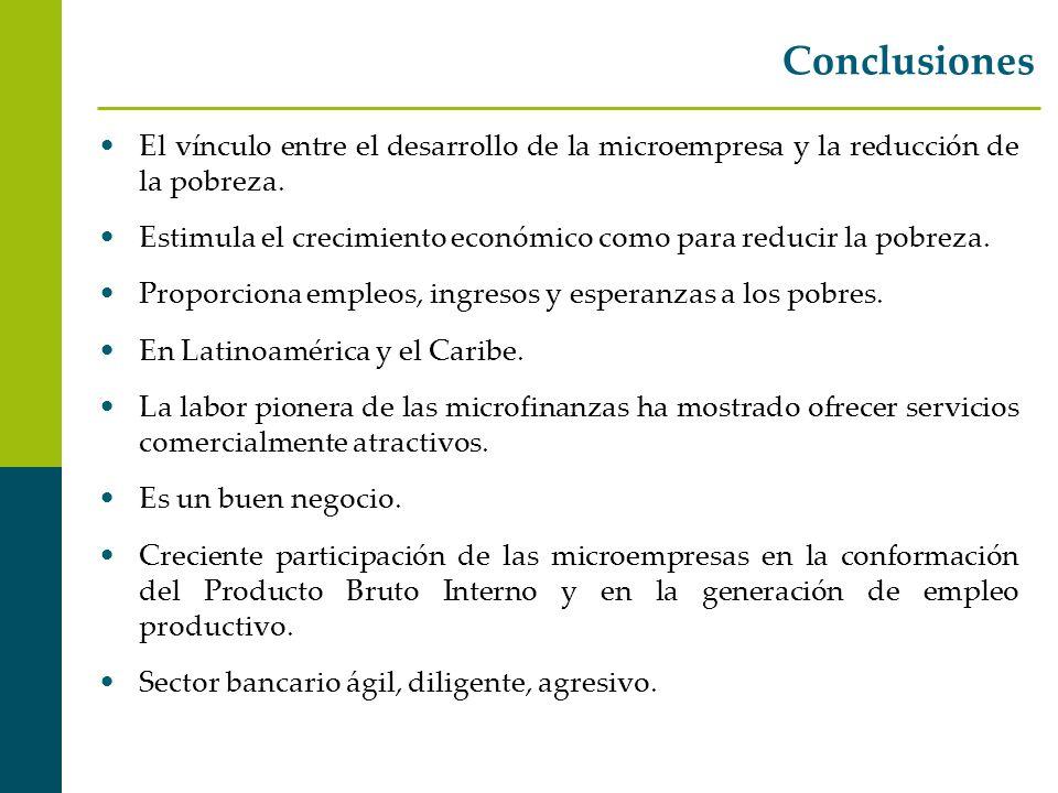Conclusiones El vínculo entre el desarrollo de la microempresa y la reducción de la pobreza.