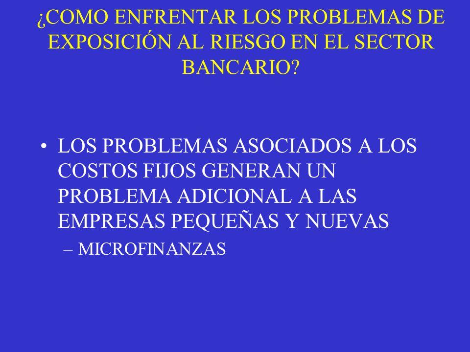 ¿COMO ENFRENTAR LOS PROBLEMAS DE EXPOSICIÓN AL RIESGO EN EL SECTOR BANCARIO