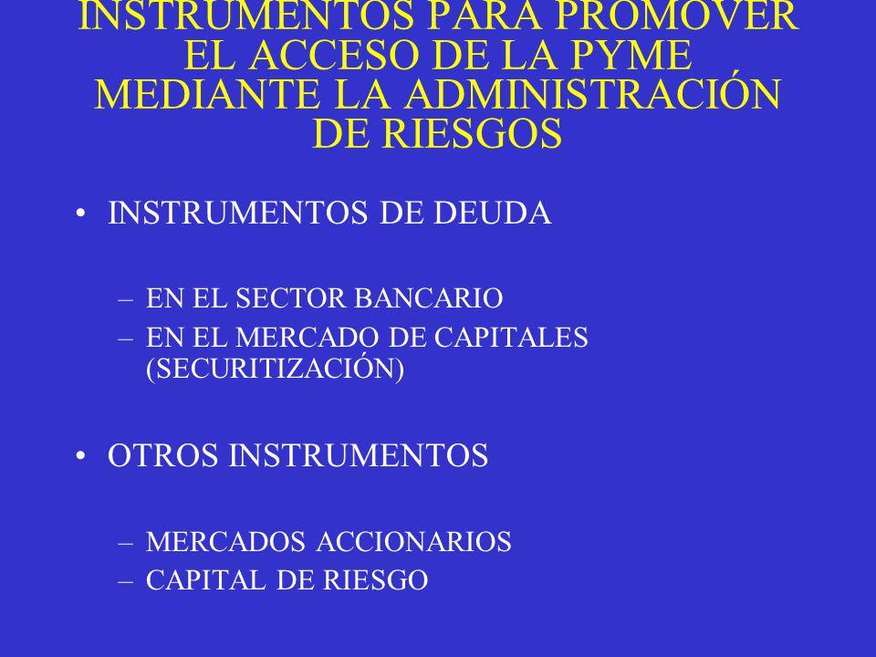 INSTRUMENTOS PARA PROMOVER EL ACCESO DE LA PYME MEDIANTE LA ADMINISTRACIÓN DE RIESGOS