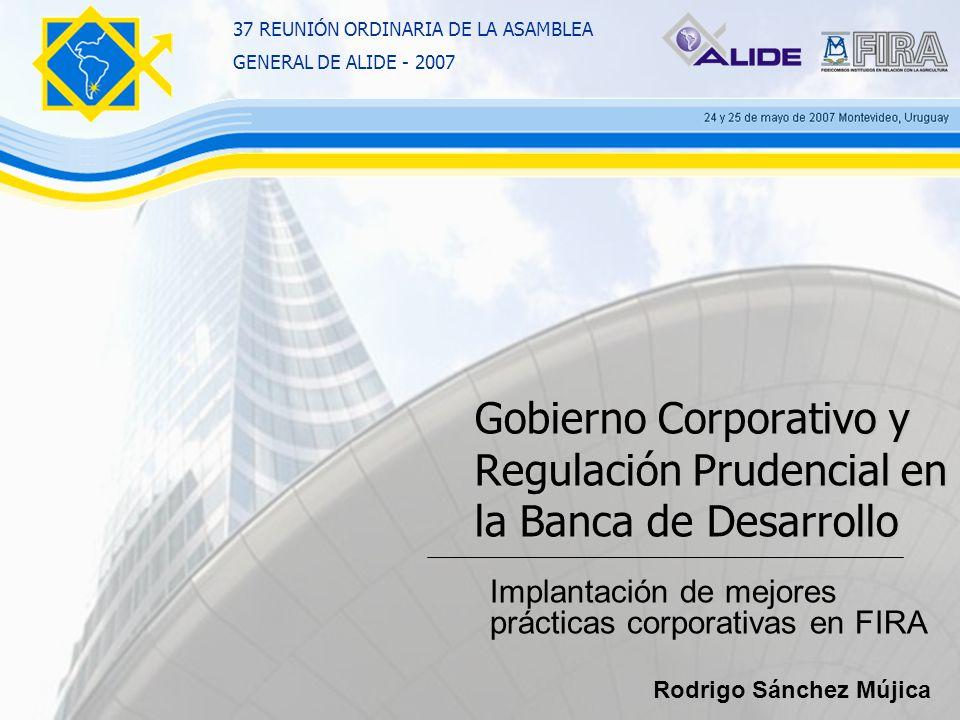 Gobierno Corporativo y Regulación Prudencial en la Banca de Desarrollo