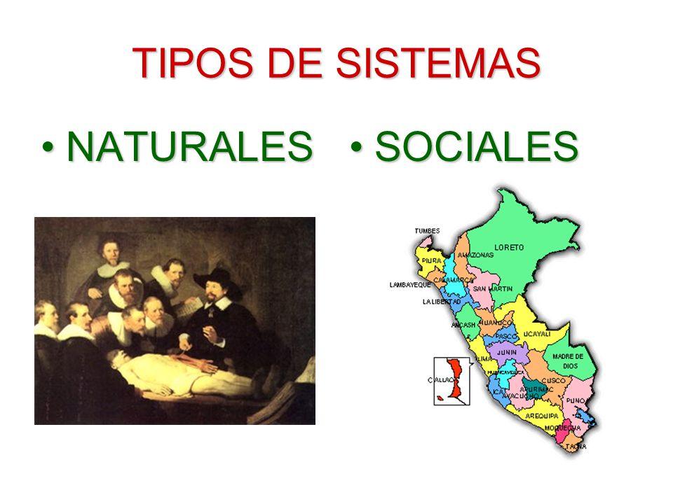 TIPOS DE SISTEMAS NATURALES SOCIALES