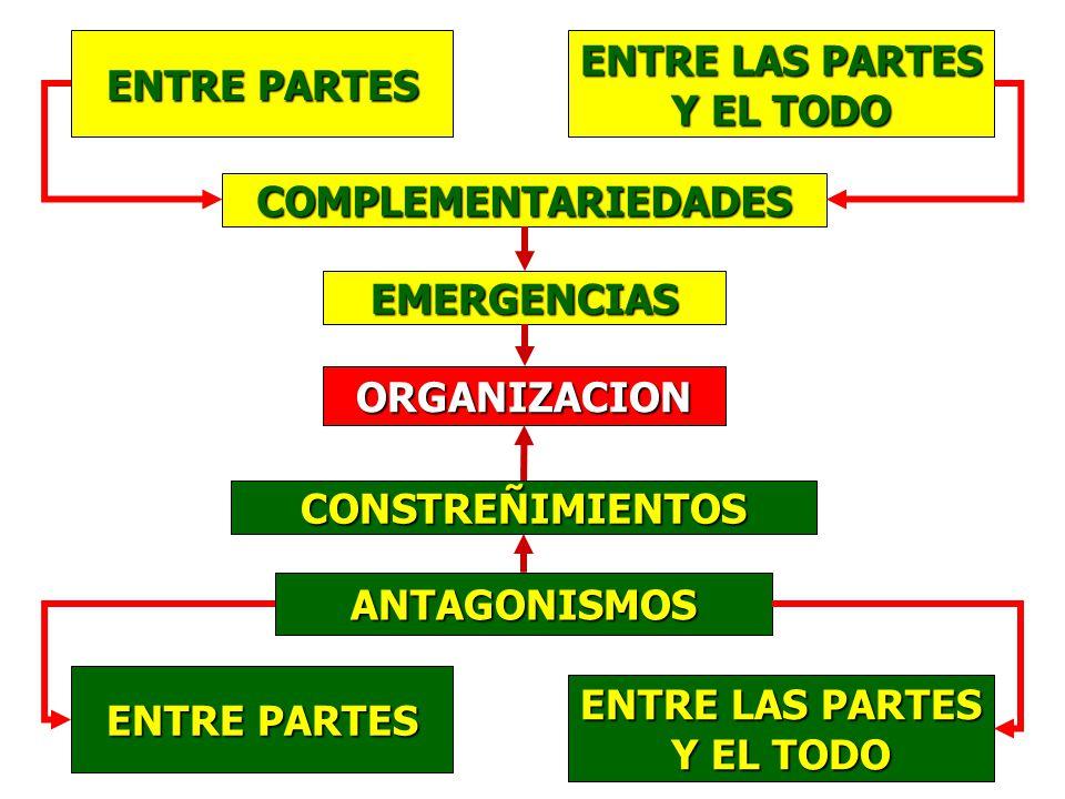 ENTRE PARTES ENTRE LAS PARTES. Y EL TODO. COMPLEMENTARIEDADES. EMERGENCIAS. ORGANIZACION. CONSTREÑIMIENTOS.