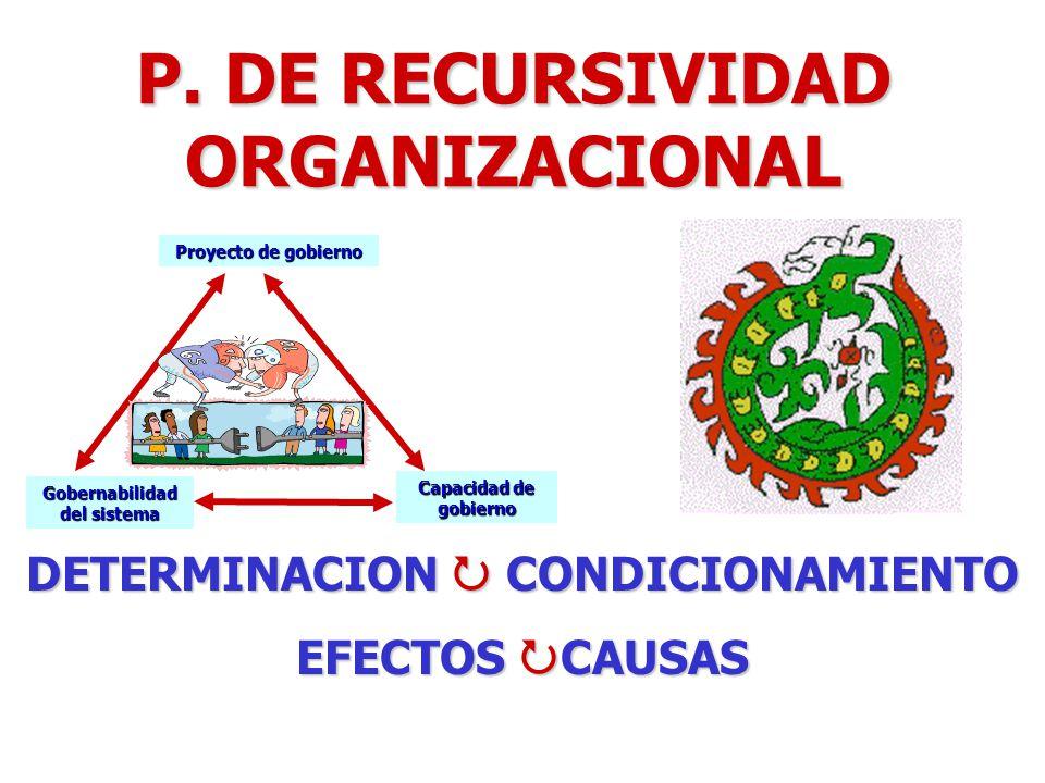 P. DE RECURSIVIDAD ORGANIZACIONAL