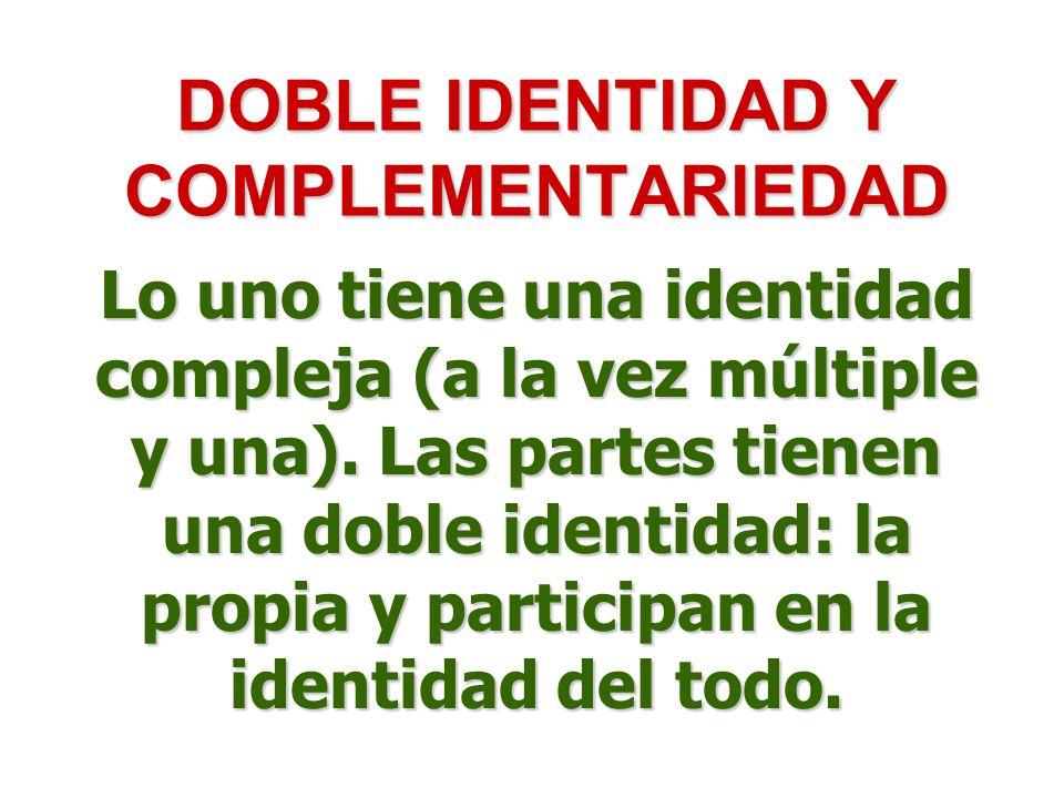 DOBLE IDENTIDAD Y COMPLEMENTARIEDAD