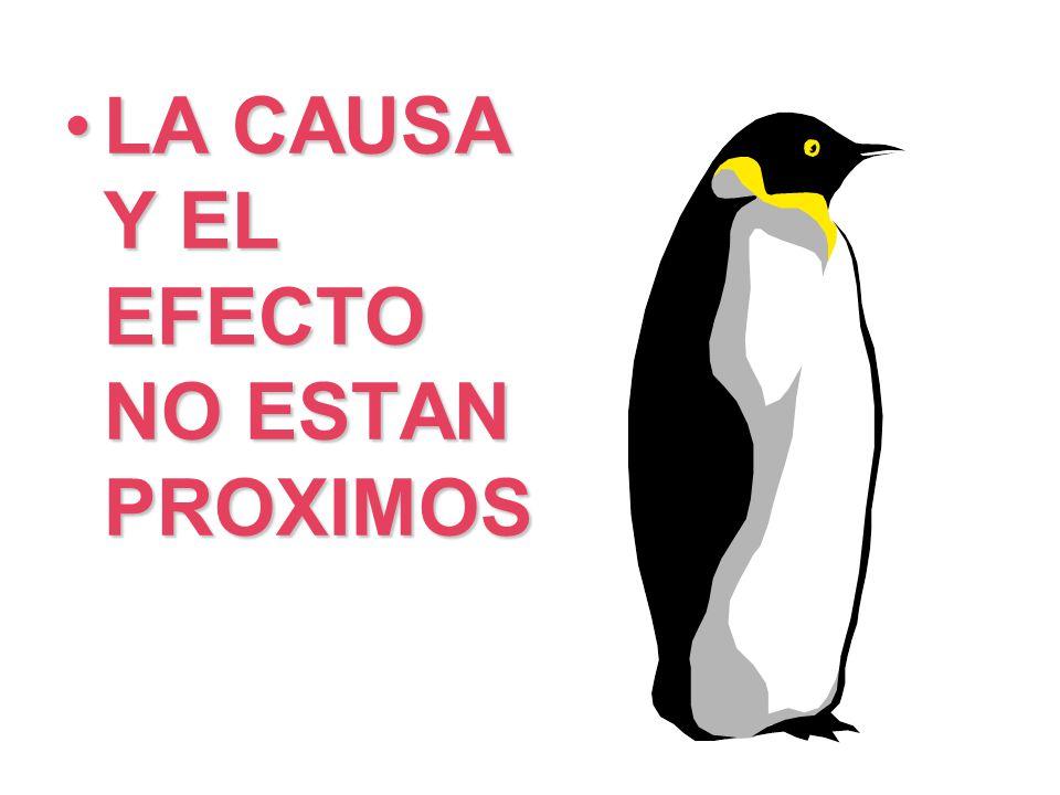 LA CAUSA Y EL EFECTO NO ESTAN PROXIMOS