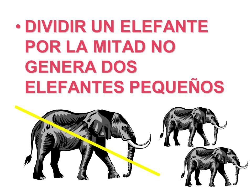 DIVIDIR UN ELEFANTE POR LA MITAD NO GENERA DOS ELEFANTES PEQUEÑOS