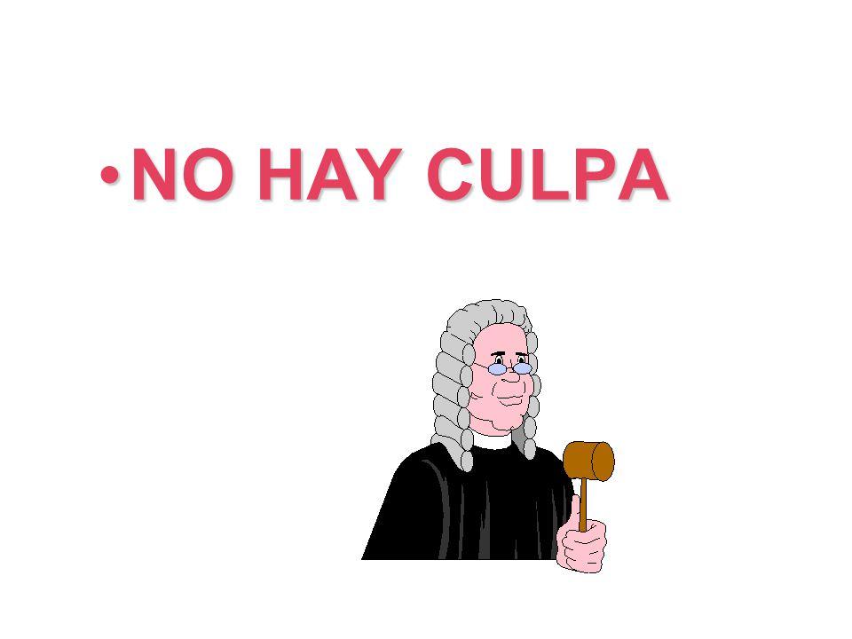 NO HAY CULPA