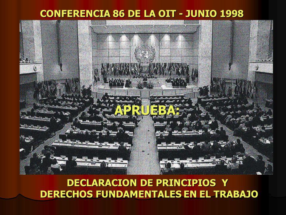 DECLARACION DE PRINCIPIOS Y DERECHOS FUNDAMENTALES EN EL TRABAJO