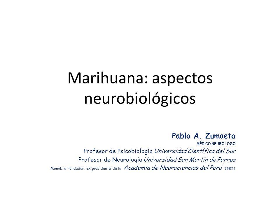 Marihuana: aspectos neurobiológicos