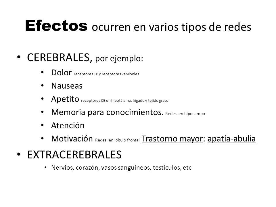 Efectos ocurren en varios tipos de redes