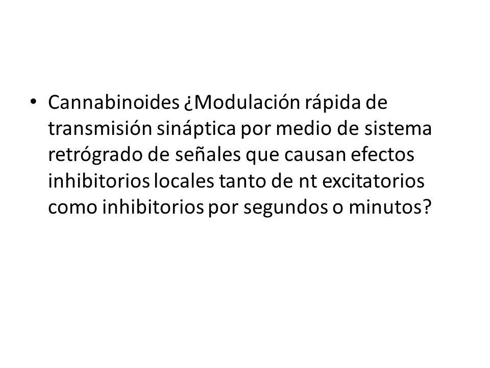 Cannabinoides ¿Modulación rápida de transmisión sináptica por medio de sistema retrógrado de señales que causan efectos inhibitorios locales tanto de nt excitatorios como inhibitorios por segundos o minutos