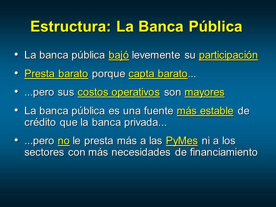 Estructura: La Banca Pública
