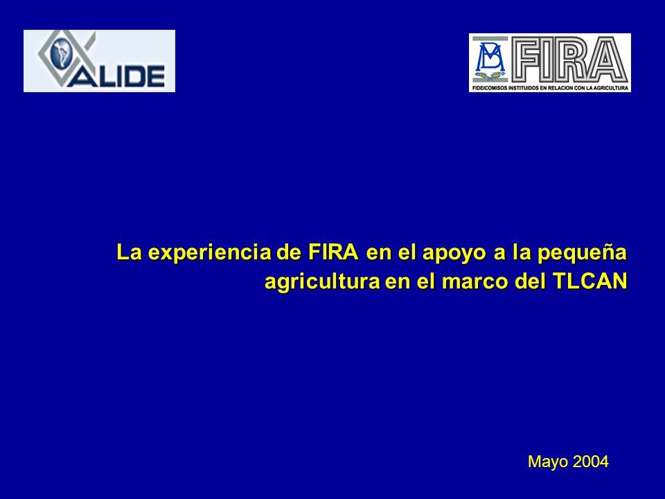 La experiencia de FIRA en el apoyo a la pequeña agricultura en el marco del TLCAN