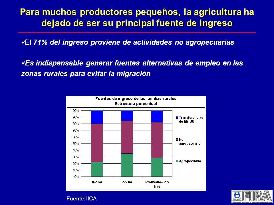 Para muchos productores pequeños, la agricultura ha dejado de ser su principal fuente de ingreso