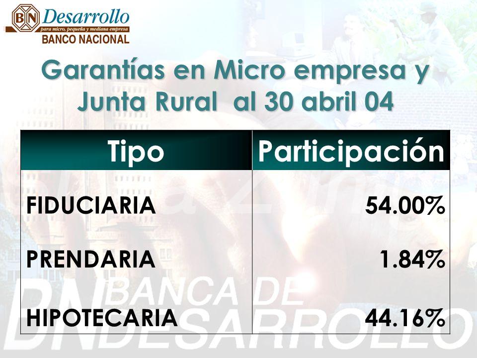 Garantías en Micro empresa y Junta Rural al 30 abril 04