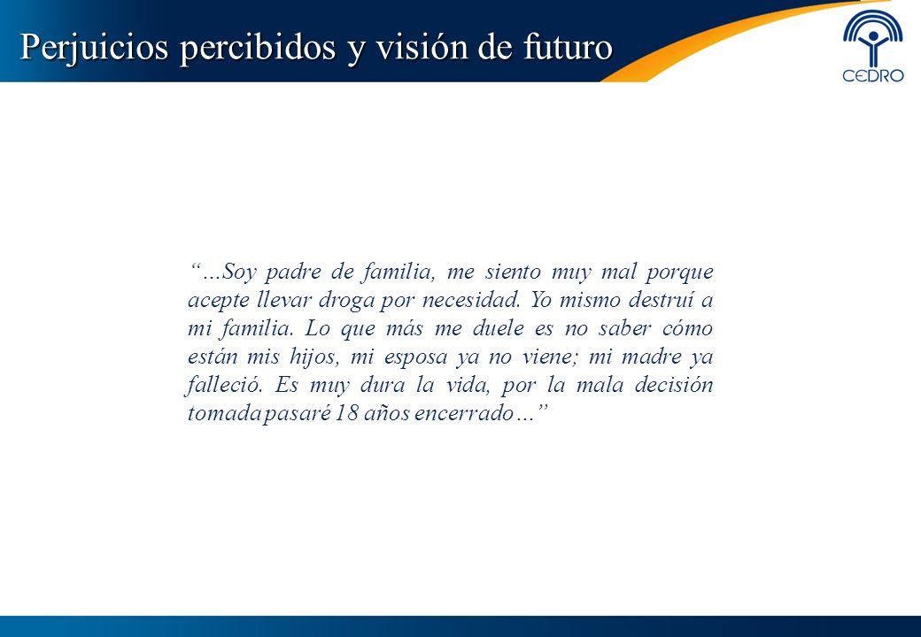 Perjuicios percibidos y visión de futuro