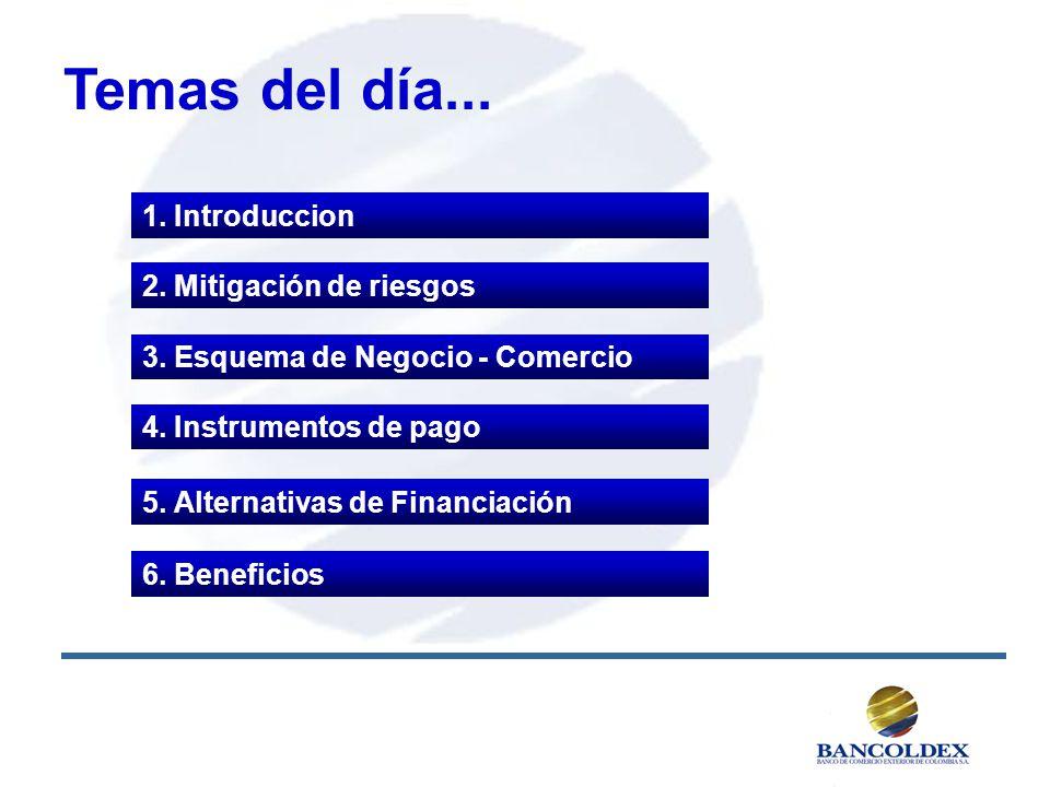 Temas del día... 1. Introduccion 2. Mitigación de riesgos
