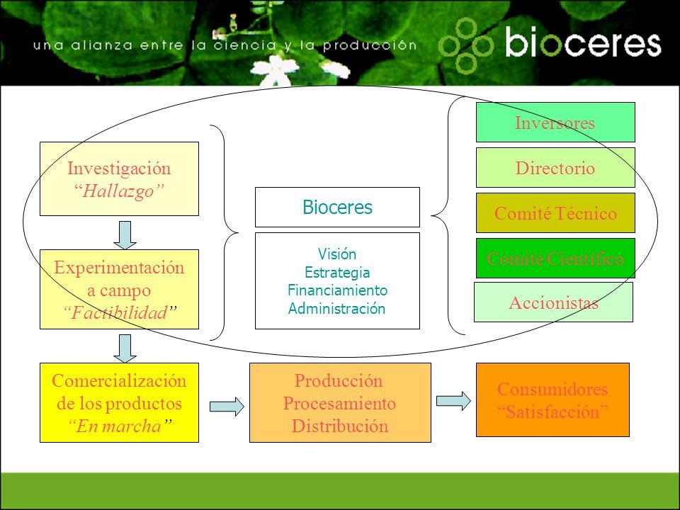 Inversores Investigación Hallazgo Directorio Bioceres Comité Técnico