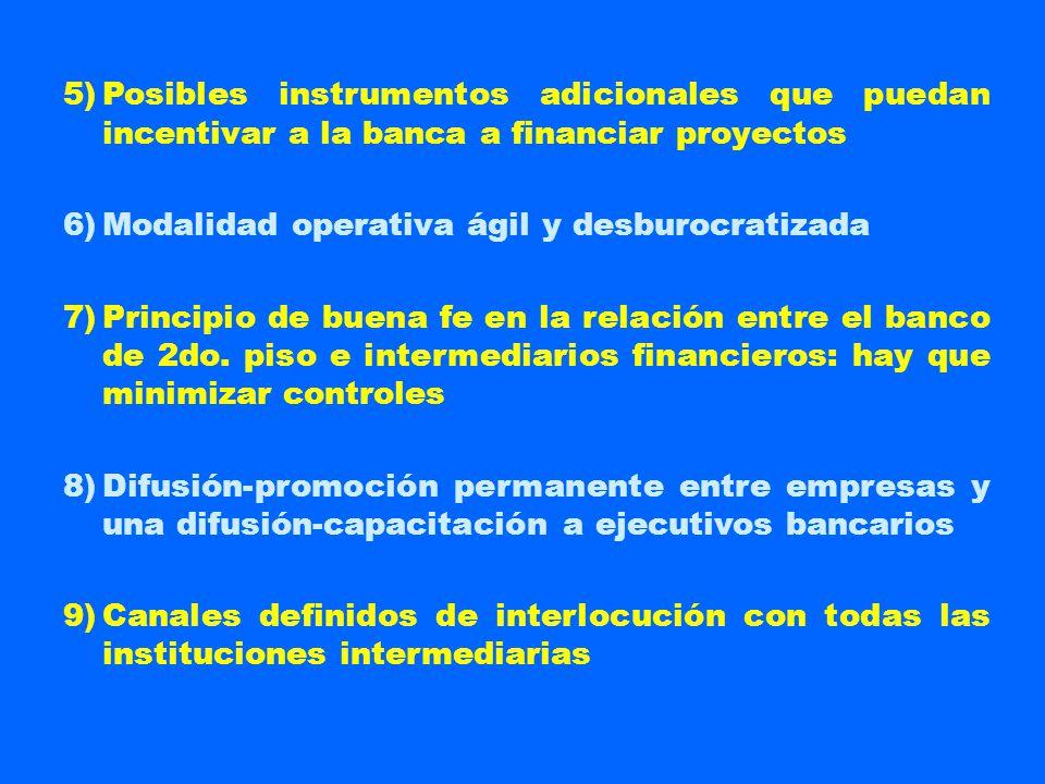 5) Posibles instrumentos adicionales que puedan incentivar a la banca a financiar proyectos