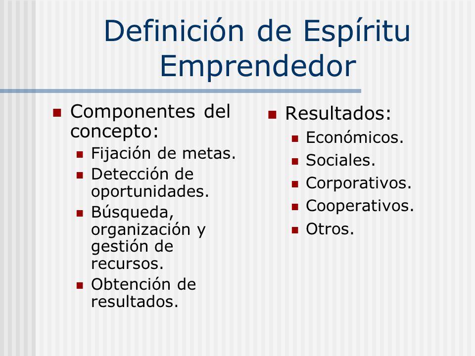 Definición de Espíritu Emprendedor