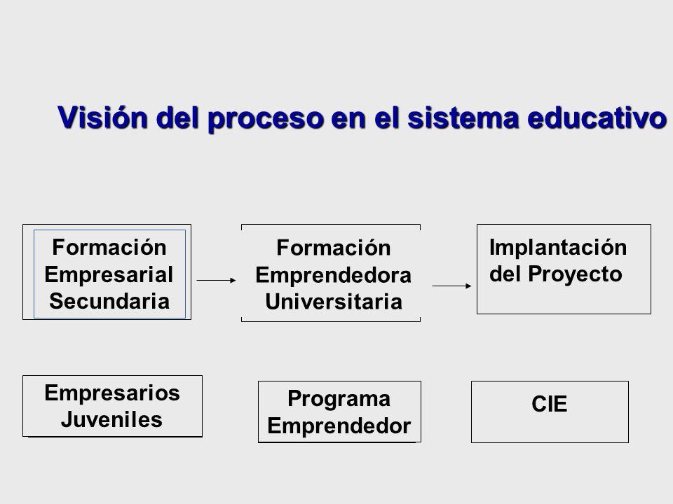 Visión del proceso en el sistema educativo