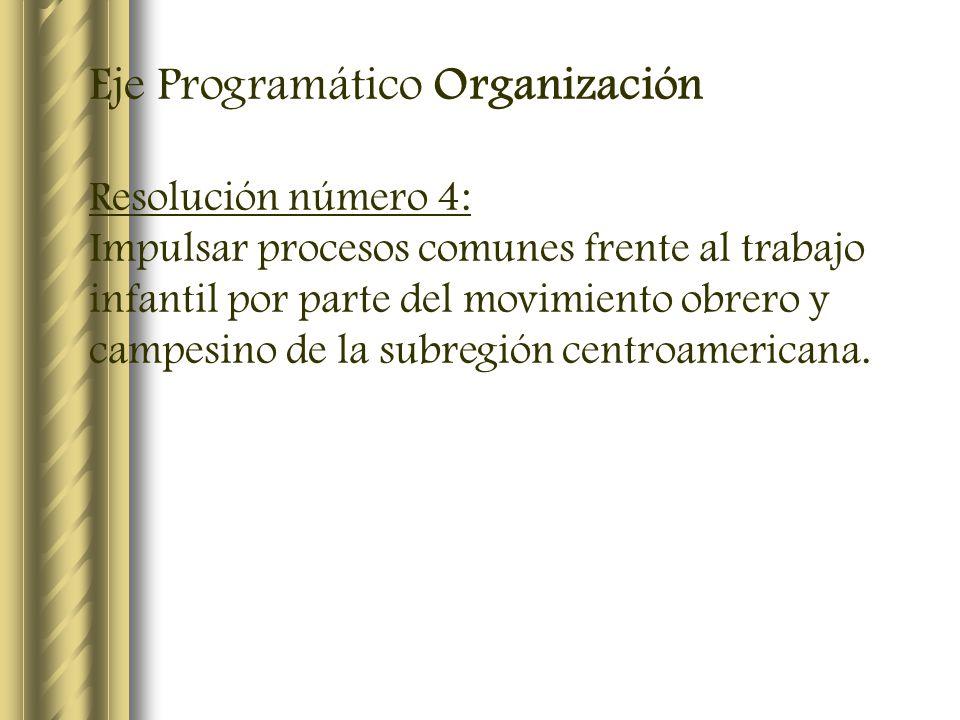 Eje Programático Organización