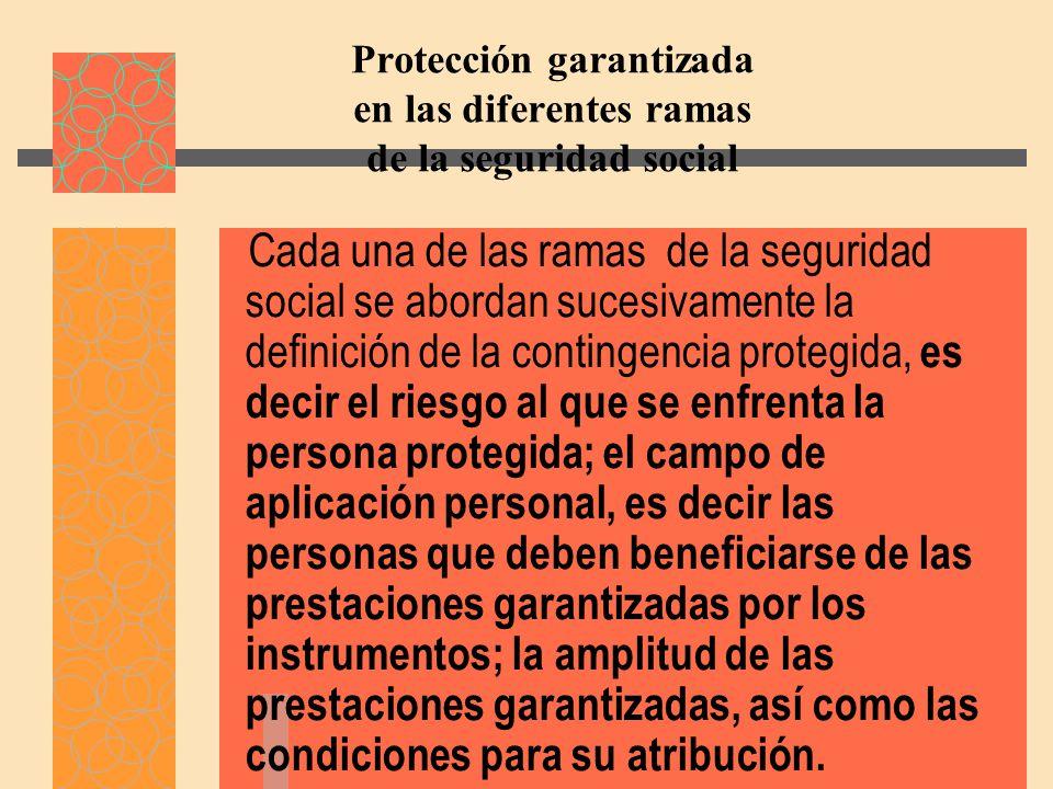 Protección garantizada en las diferentes ramas de la seguridad social