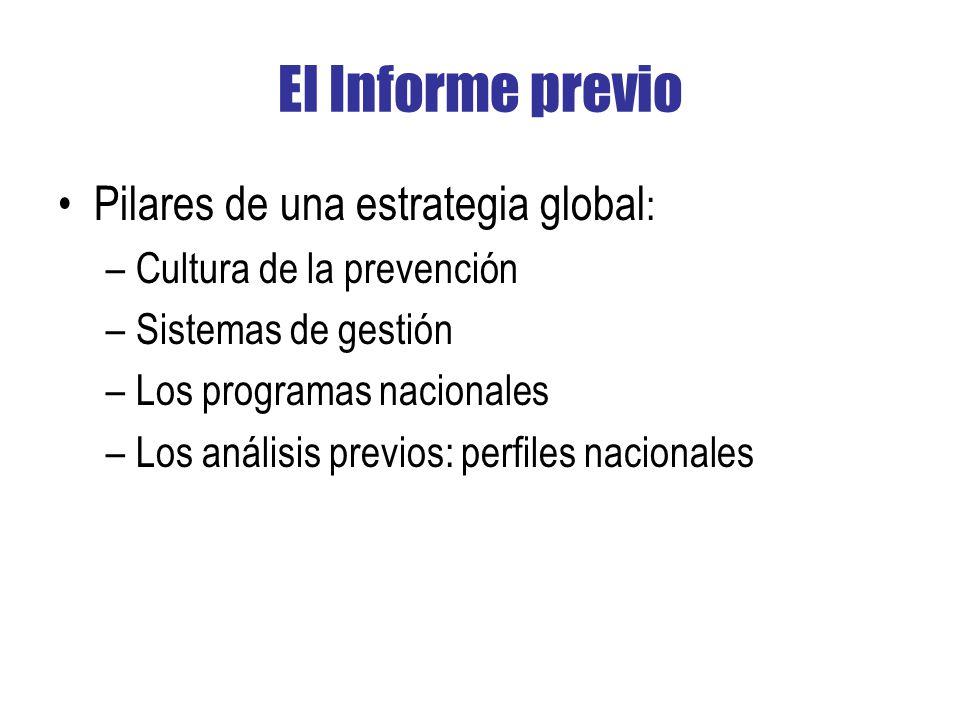 El Informe previo Pilares de una estrategia global: