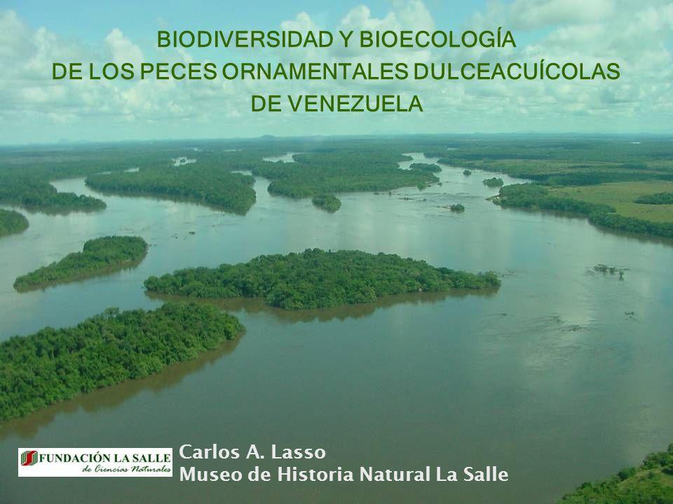BIODIVERSIDAD Y BIOECOLOGÍA DE LOS PECES ORNAMENTALES DULCEACUÍCOLAS