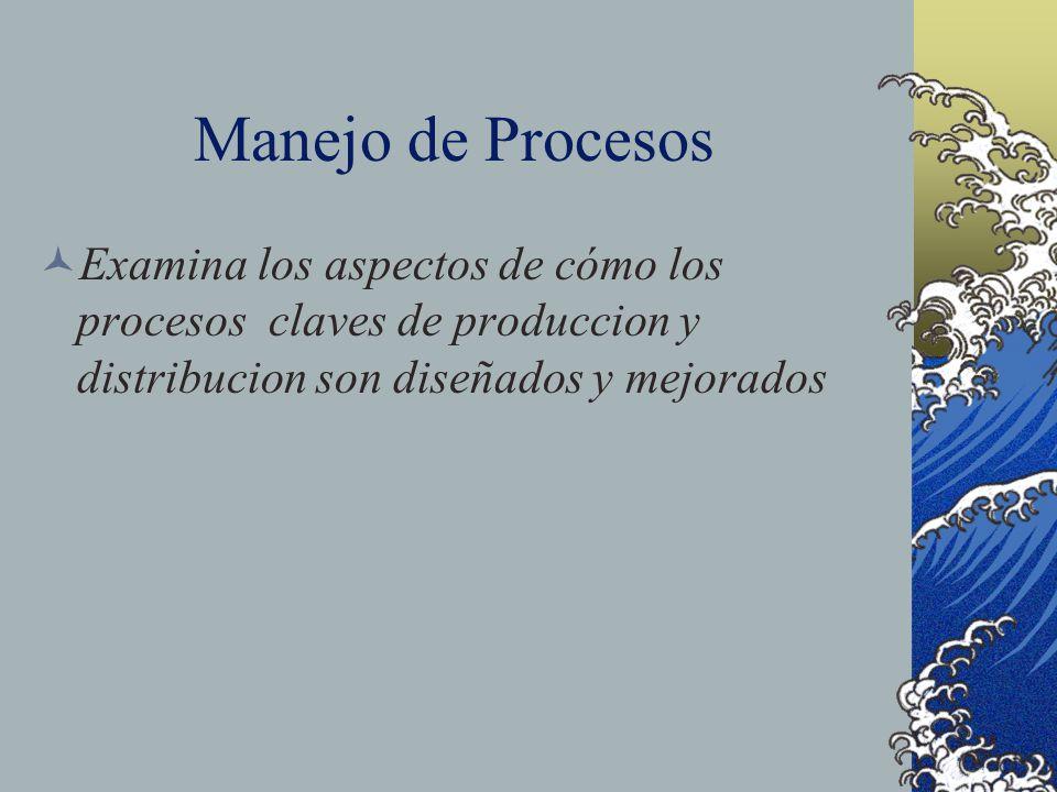 Manejo de Procesos Examina los aspectos de cómo los procesos claves de produccion y distribucion son diseñados y mejorados.