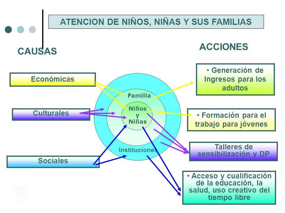 ACCIONES CAUSAS ATENCION DE NIÑOS, NIÑAS Y SUS FAMILIAS
