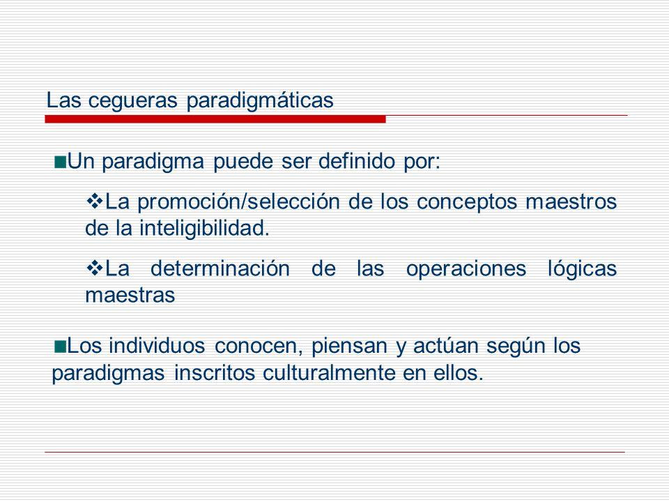 Las cegueras paradigmáticas
