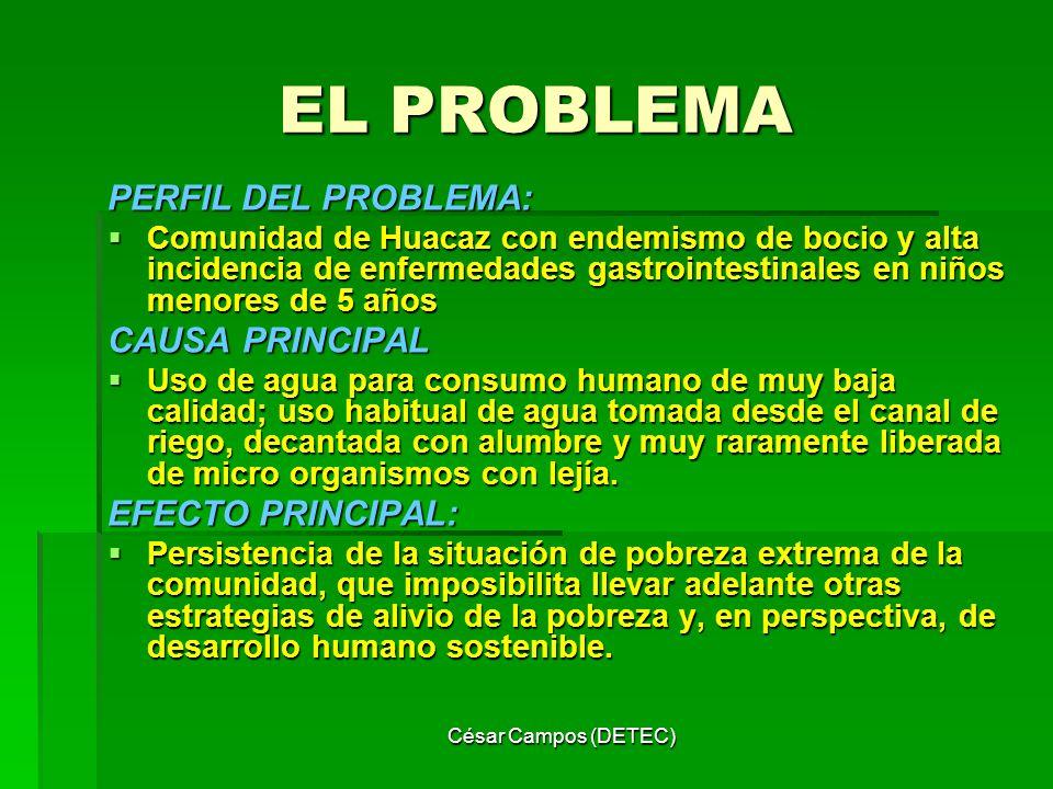 EL PROBLEMA PERFIL DEL PROBLEMA: CAUSA PRINCIPAL EFECTO PRINCIPAL:
