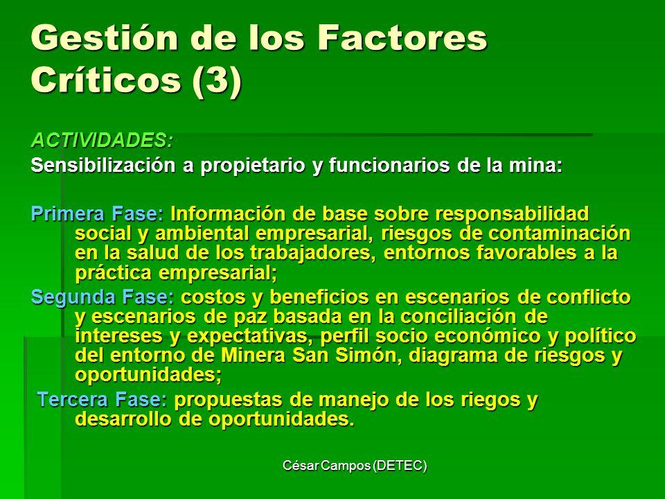 Gestión de los Factores Críticos (3)