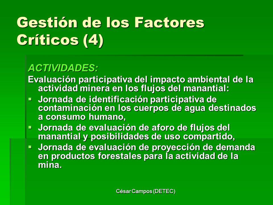 Gestión de los Factores Críticos (4)
