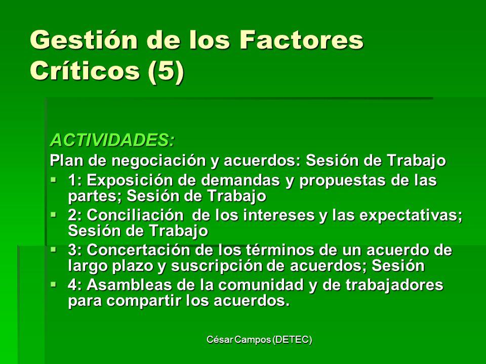 Gestión de los Factores Críticos (5)