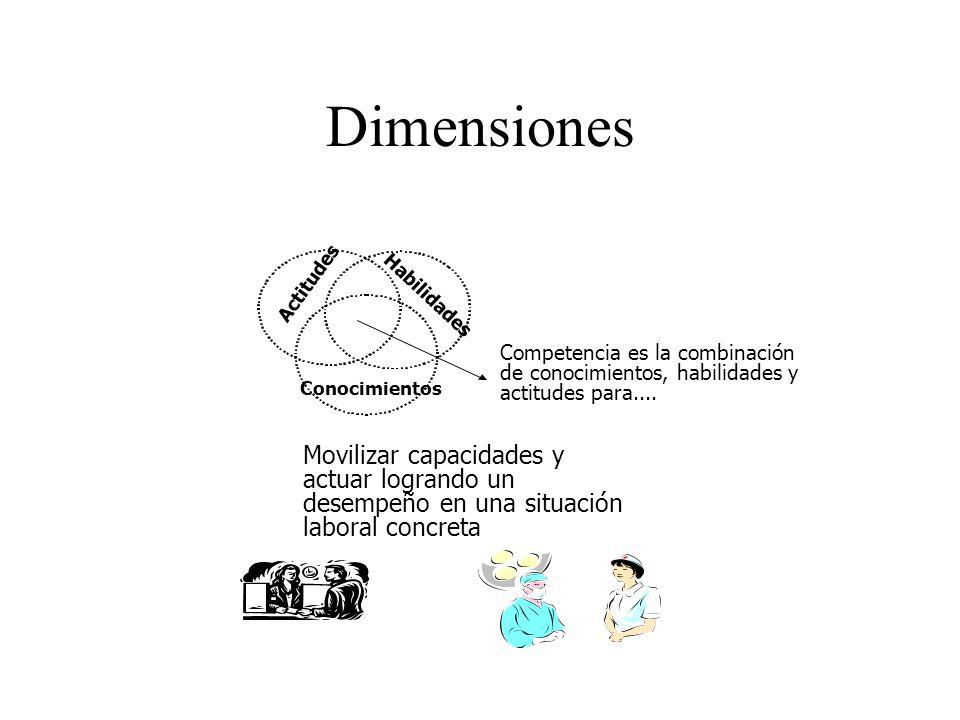 Dimensiones Movilizar capacidades y actuar logrando un