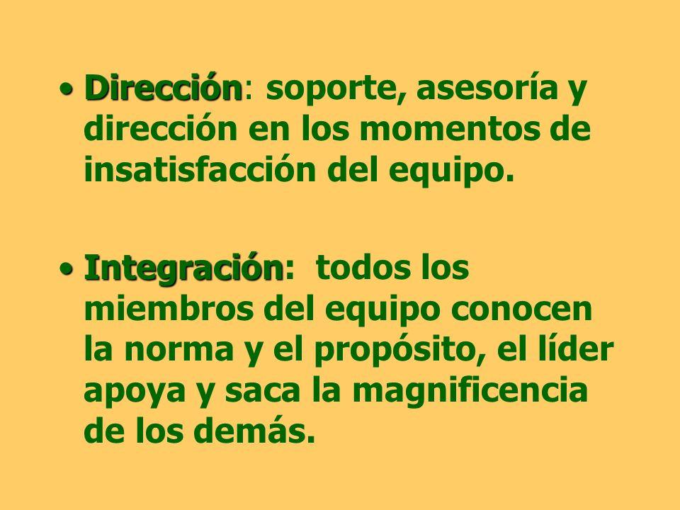 Dirección: soporte, asesoría y dirección en los momentos de insatisfacción del equipo.