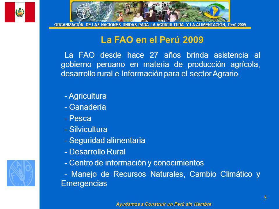 ORGANIZACIÓN DE LAS NACIONES UNIDAS PARA LA AGRICULTURA Y LA ALIMENTACIÓN, Perú 2009