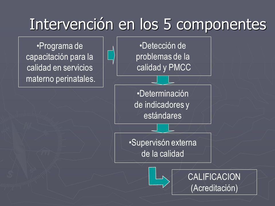 Intervención en los 5 componentes