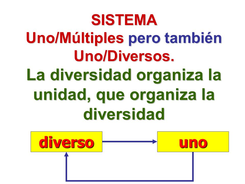 SISTEMA Uno/Múltiples pero también Uno/Diversos