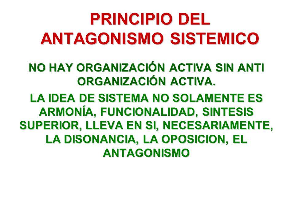 PRINCIPIO DEL ANTAGONISMO SISTEMICO