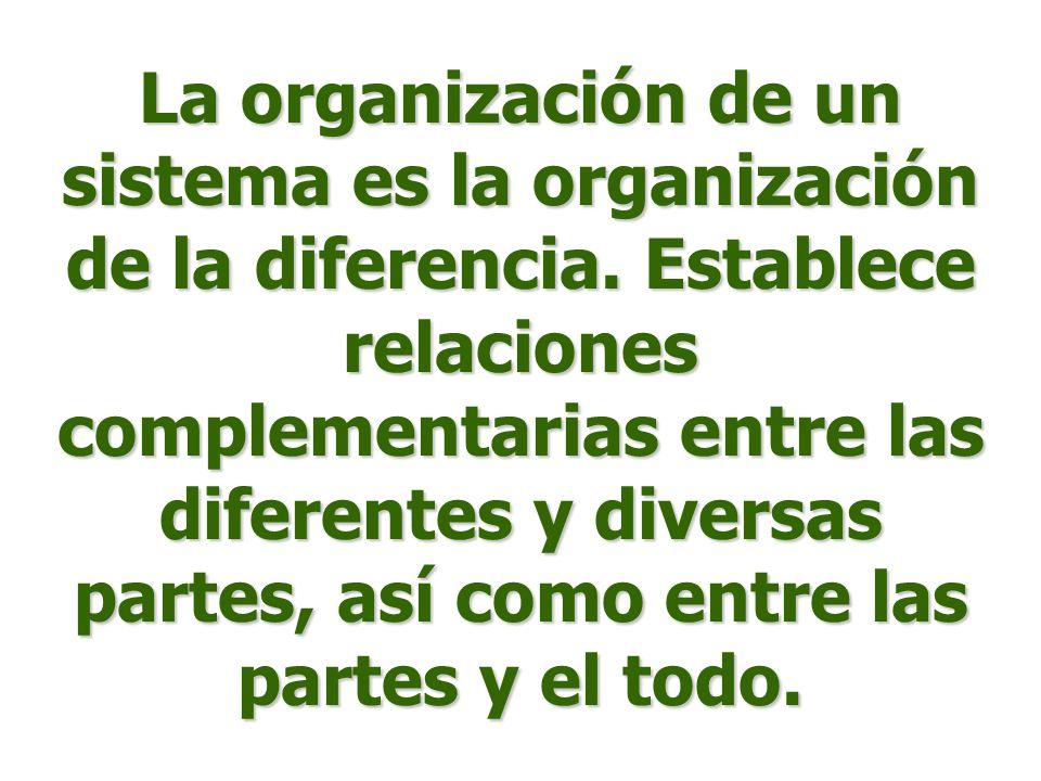 La organización de un sistema es la organización de la diferencia