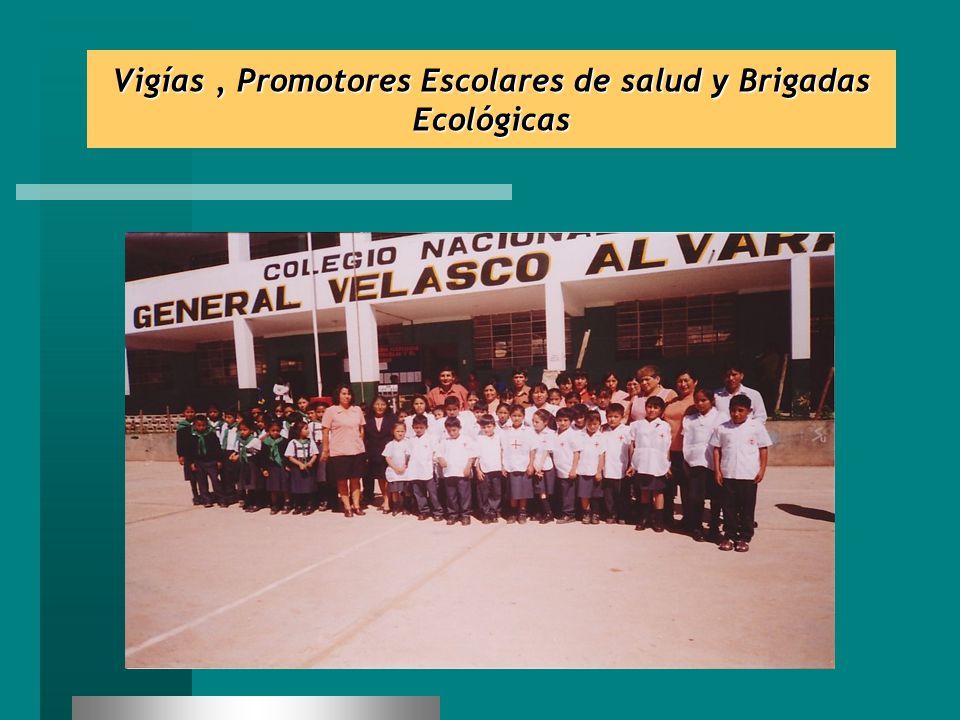 Vigías , Promotores Escolares de salud y Brigadas Ecológicas