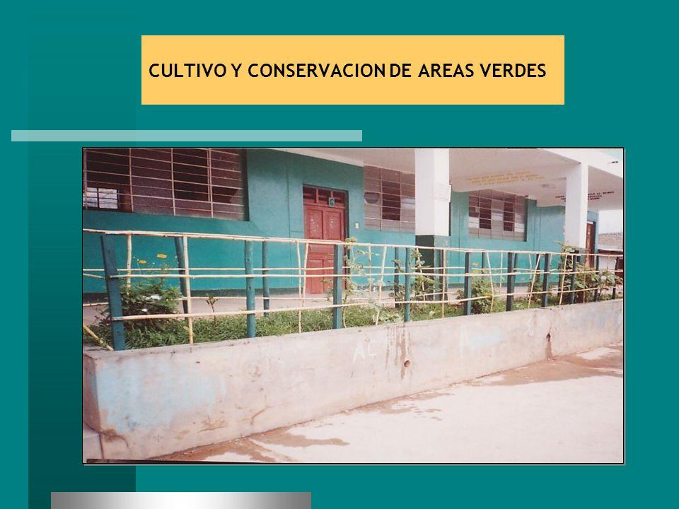 CULTIVO Y CONSERVACION DE AREAS VERDES